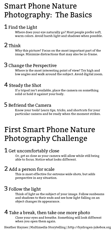 Smart-Phone-Nature-Photography